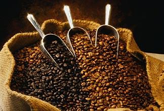 coffe bean blend