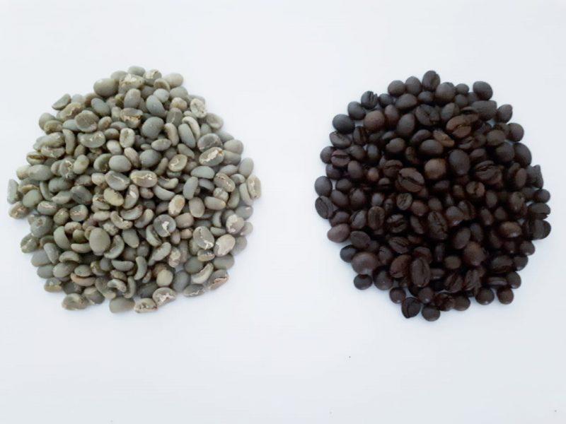 Roasting merupakan proses penting untuk menentukan karakteristik rasa dan aroma pada racikan kopi. Meskipun dengan biji kopi yang sama,