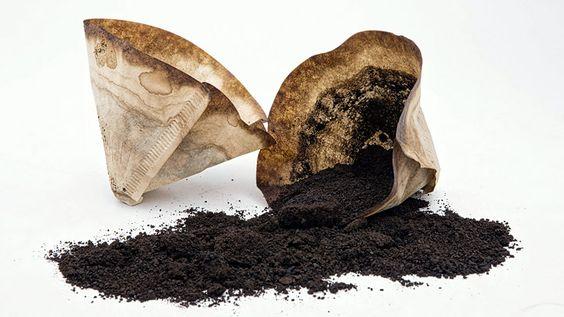 manfaat dan kegunaan ampas kopi sehari-hari